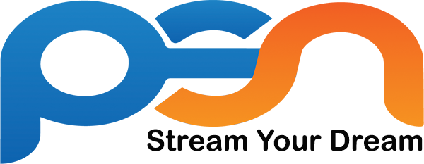 Professional Streaming Services